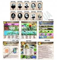 Кабінет біології Комплект стендів Артікул: 12463 Виробник: Інтердизайн