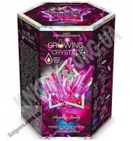 Набор для проведения опытов Growing Crystal Растущий кристалл Розовый Код GRK0108 Изд: Danko Toys